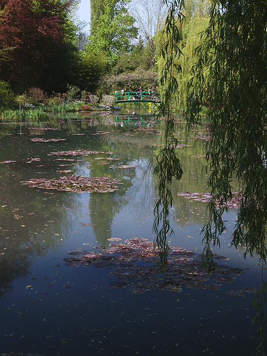 Photograph of Monet's Waterlily Ponds, Giverny, France, by Ann Trusty