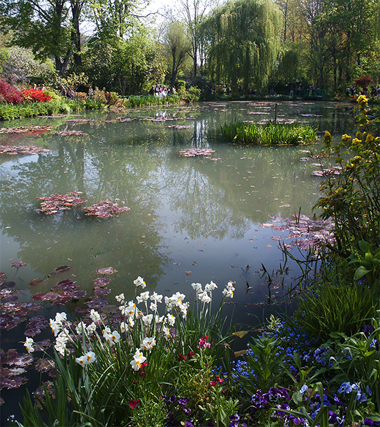 Photograph of Monet's water garden, Giverny, France, by Ann Trusty