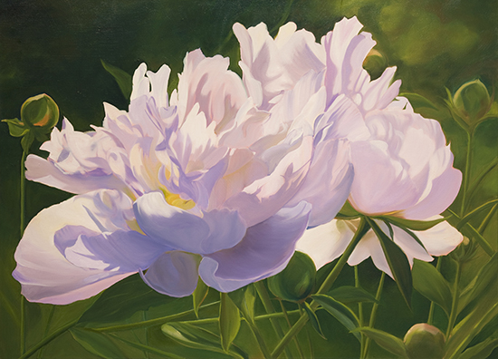 Oil Painting of Peonies by Ann Trusty