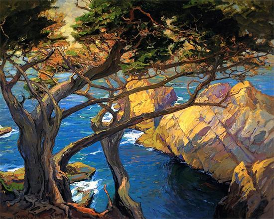 Cleft Born Trees, Monterey, 1924, Franz Bischoff