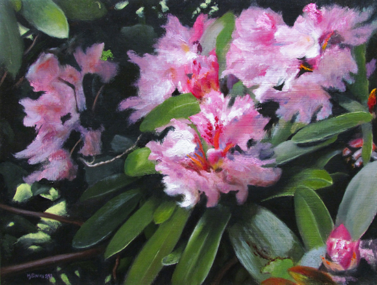"Rhododenrons, 11 x 14"", Oil, © Bruce Newman"