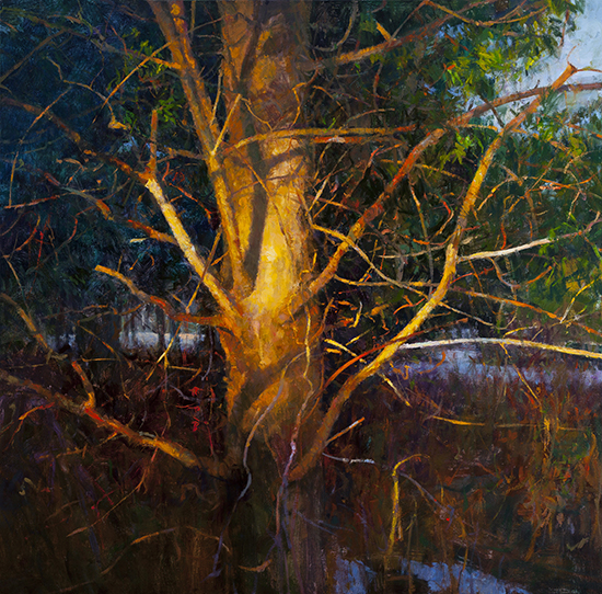 oil painting of pine tree at sunset, by Peter Fiore