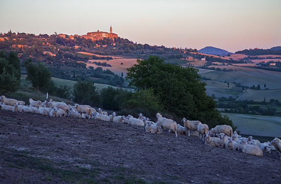 photo of Pienza, Italy, at sunset.©J.Hulsey watercolor workshops