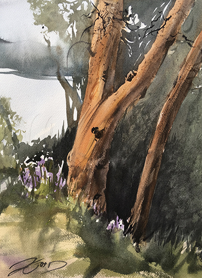 Madrone - Vashon Island, 11 x 14, Plein Air Watercolor, © Jeff Good