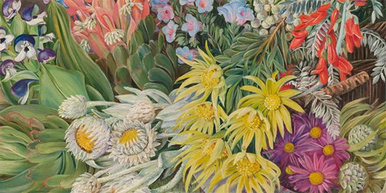 A Medley of Flowers from Table Mountain Cape of Good Hope Marianne North detail