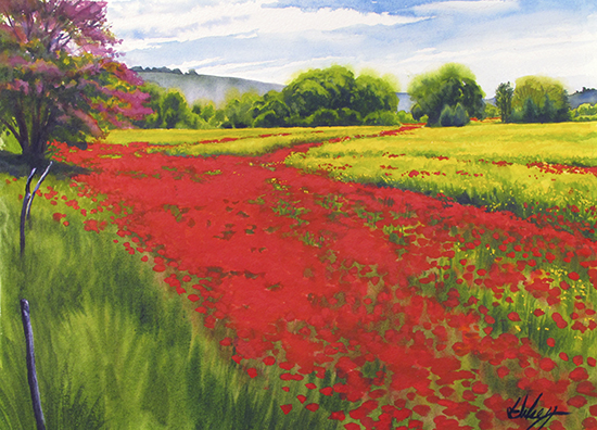 watercolor painting of poppy fields © by John Hulsey