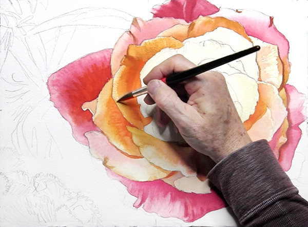 Rose Delight Watercolor Demonstration by John Hulsey