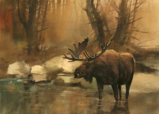 Late Afternoon Moose by Mort Solberg