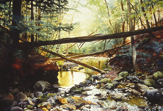 watercolor of trees fallen across a stream by John Hulsey